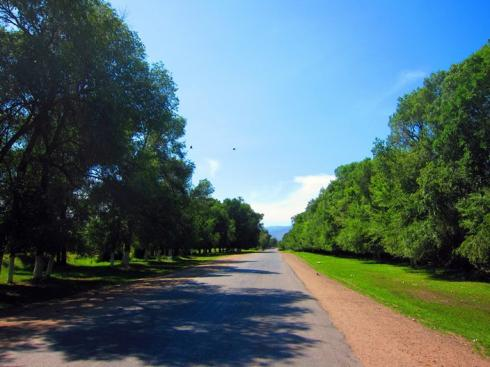 So nice riding along the tree-lined avenues into Talas - the last town before Kazakhstan